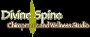 divine spine chiropractic logo