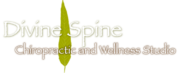 Seattle Divine Spine Chiropractic Studio